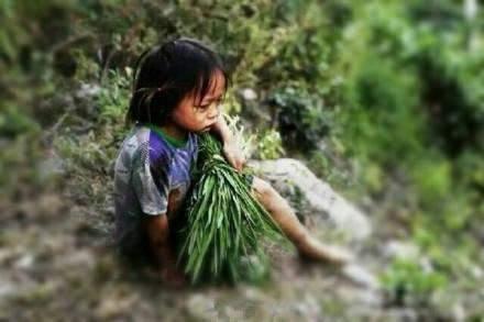 一个四岁孩子的两只眼睛告诉你: 为什么穷人的孩子早当家