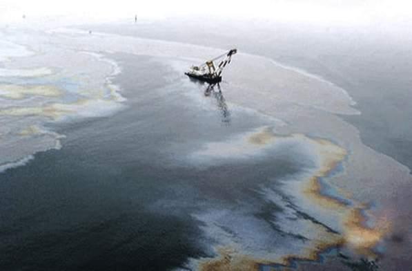 易卫士微生物净化技术制品在治理水体污染中的作用