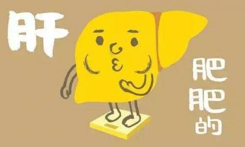瘦人就不会得脂肪肝吗?脂肪肝真的只是肥胖的专利吗?