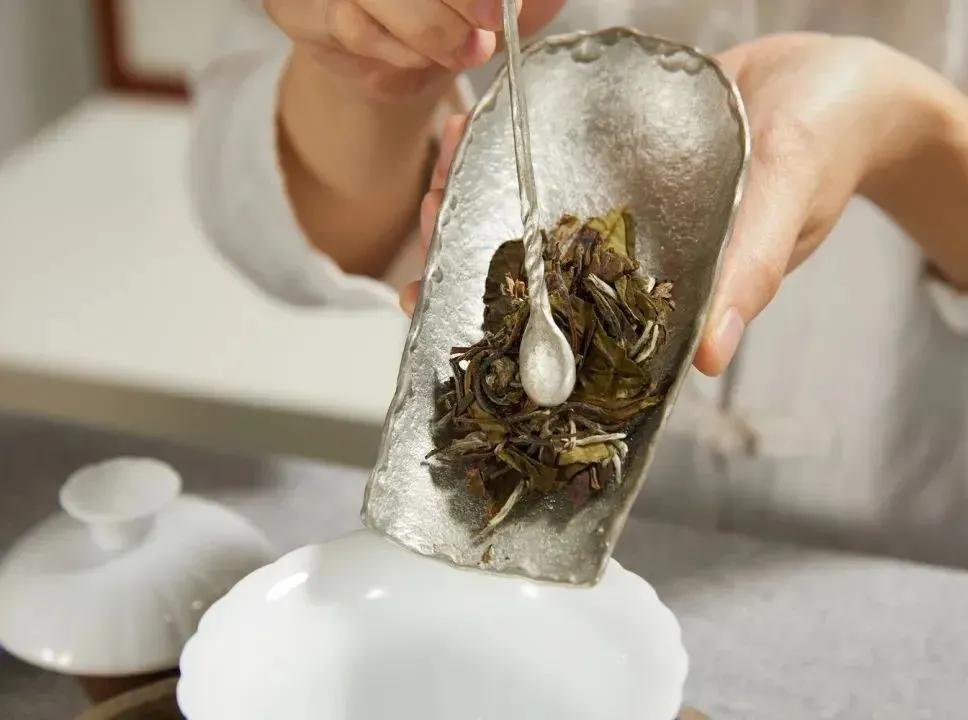 一泡茶该放多少茶叶?看看这13款茶