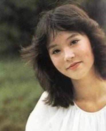 18年前,刘家良突袭回家给妻子惊喜,三分钟后妻子上司在家中坠亡 翁静晶 刘家良 手游热点  第12张
