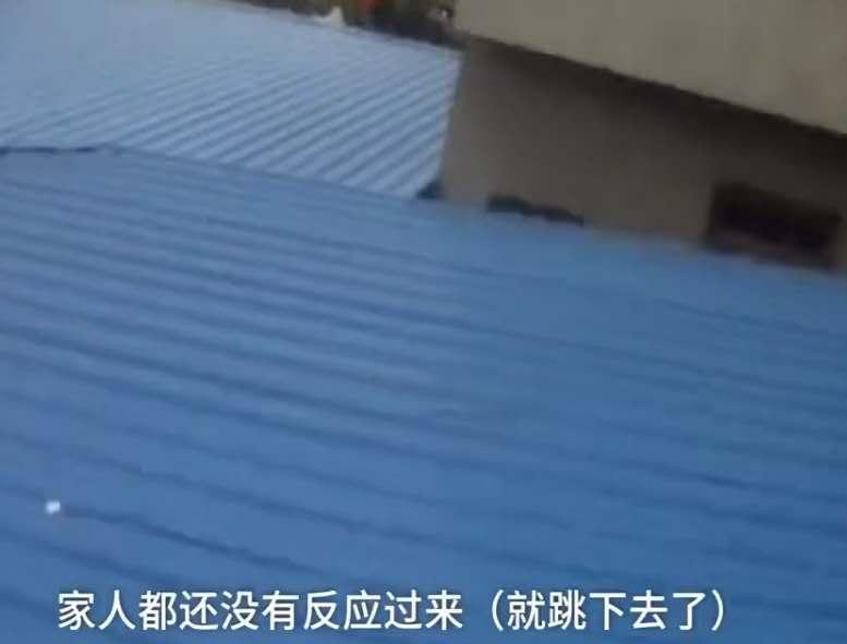 桜井あゆ因不让玩手机,跑上5楼威胁跳楼,现在的孩子就应该天下粮人