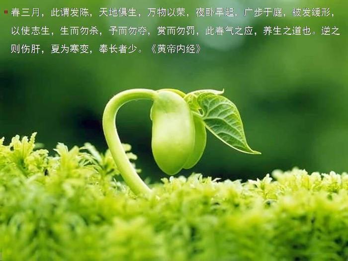 《黄帝内经》话饮食:春天怎样的饮食最养生