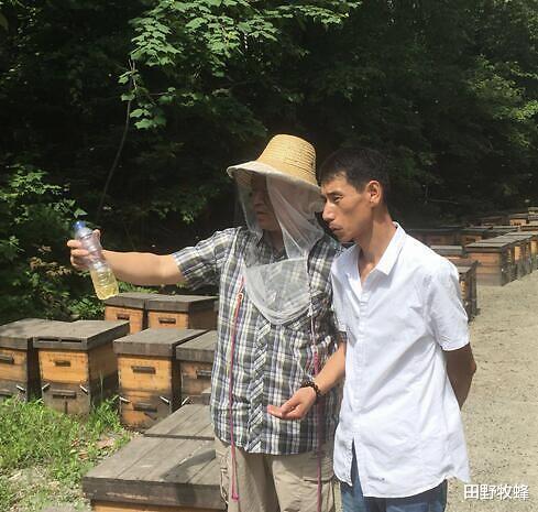 蜂蜜结晶点:蜂蜜在多少度开始结晶?