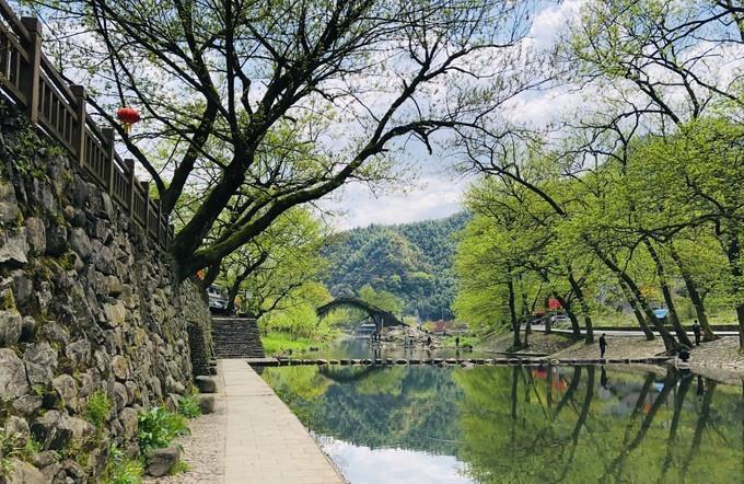 宁波又一古村走红,四明山深处的世外桃源,有着九寨沟般的美景
