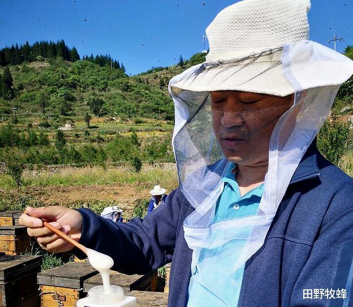 蜂蜜白色结晶怎么回事? 蜂蜜为什么会结晶白色?