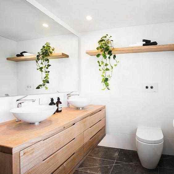 卫生间放什么小盆植物,卫生间放什么植物旺财