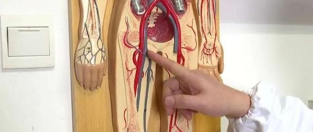 警惕!深静脉血栓近期高发,专家提醒并非老年人专属