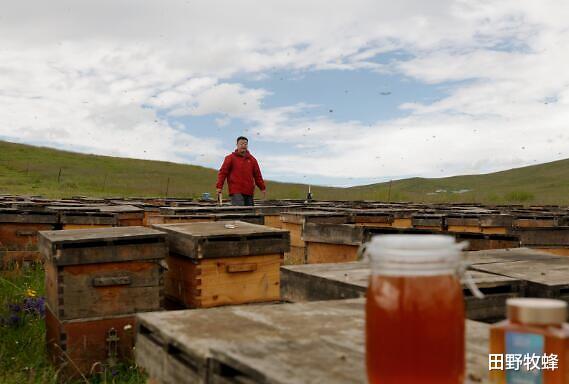 为什么喝蜂蜜过敏? 喝完蜂蜜水脸发热怎么回事?