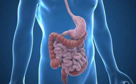 胃息肉不治疗有什么危害?