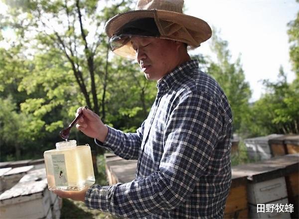 蜂蜜水解酒效果好吗? 喝醉酒了喝蜂蜜解酒吗?
