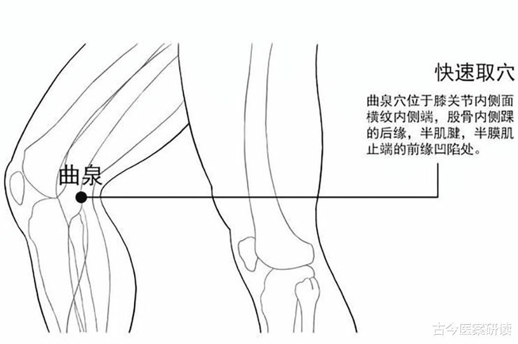 膝盖内侧的疼痛怎么选穴?医生:虽然病因很多,但是都可选曲泉
