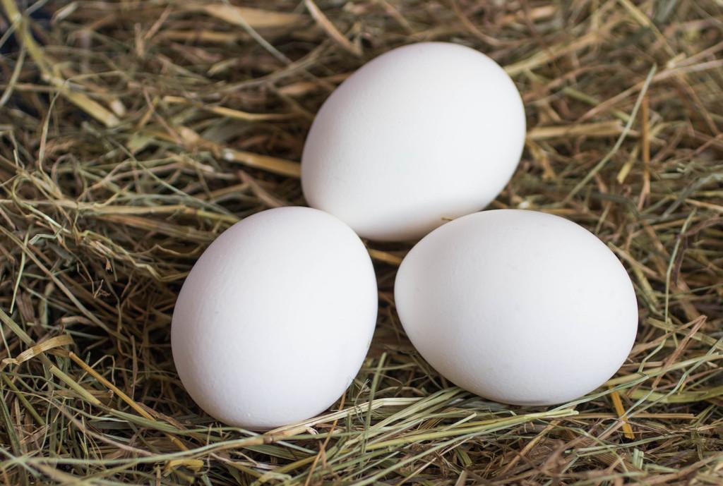 立春之后,要养肝了,肝脏喜欢这4种食物,医生提醒尽量多吃一些