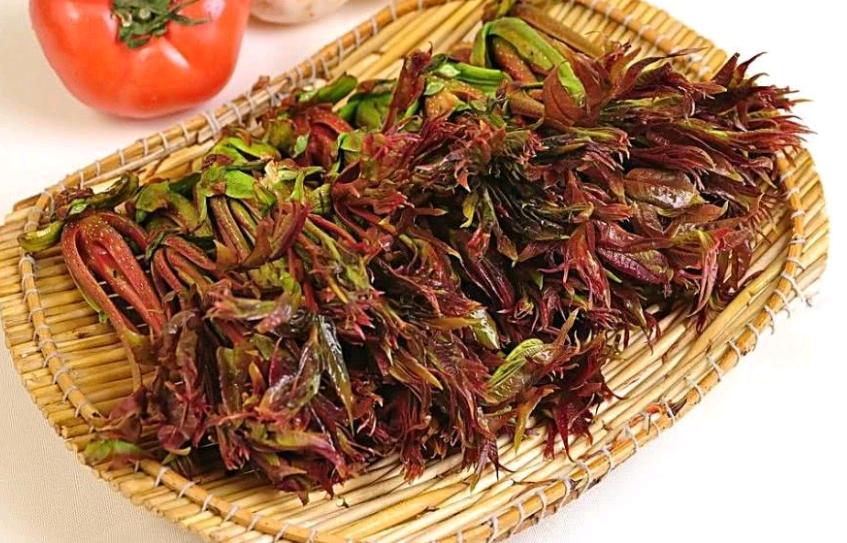 你爱吃香椿吗?这些关于香椿的知识都懂吗?