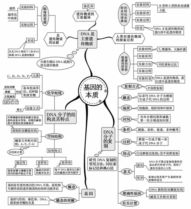 2021高考冲刺复习:高考生物想拿高分,只需看透这20张图!