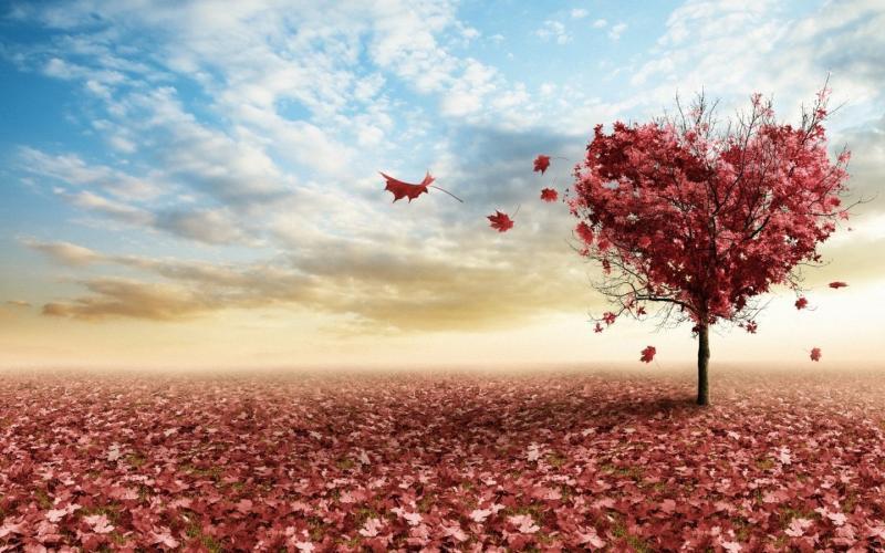 怎样从痛苦的感情漩涡里自救?教你三个方法,忘掉一个不该爱的人