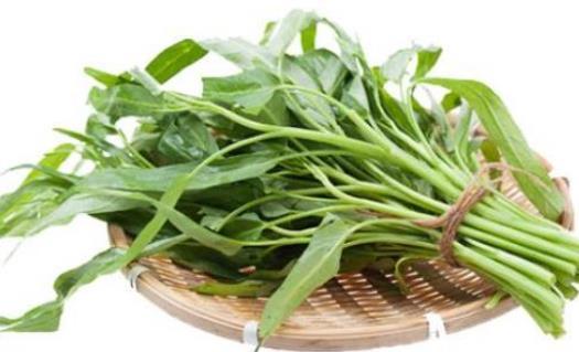 痛风患者可以吃空心菜吗?坐月子可以吃空心菜吗?