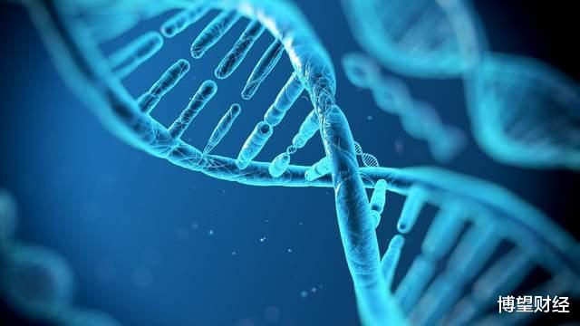 基因检测龙头美因基因上市:年营收两亿,靠扶持起家解燃眉之急?