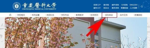 高考填志愿,为了保专业,在哪查到该大学某个专业的录取位次?