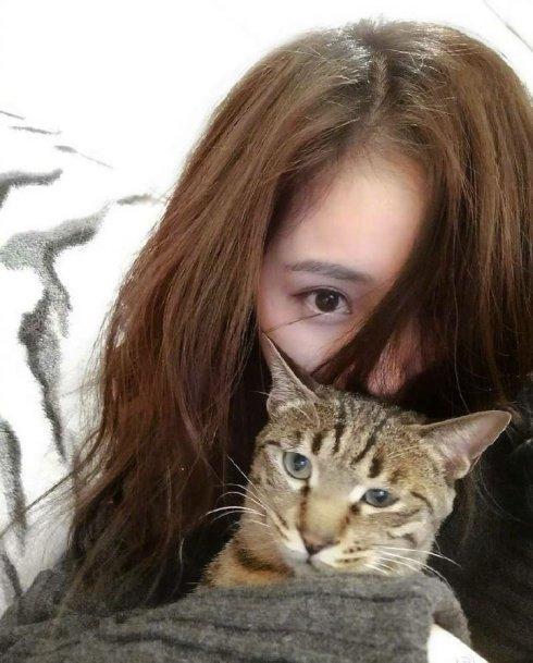 抱了一只可爱小猫挡住了嘴巴,头发有些许凌乱,眼神凌厉,散发着
