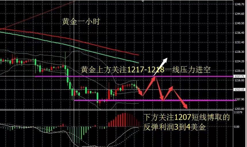 """王谢云飞:金油短线上扬引发市场""""血案"""",冲高无力仍旧回归空头"""