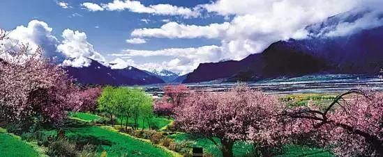 在那桃花盛开的地方 有我可爱的故乡 桃树倒影在明净的水面 桃林环