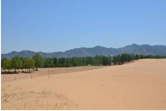 中国最小的戈壁, 里积仅有200亩, 本地人靠它富得流油
