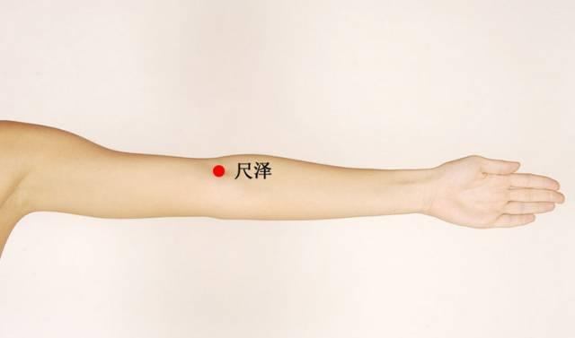 手臂上有个补肾穴你知道吗 经常按摩效果好
