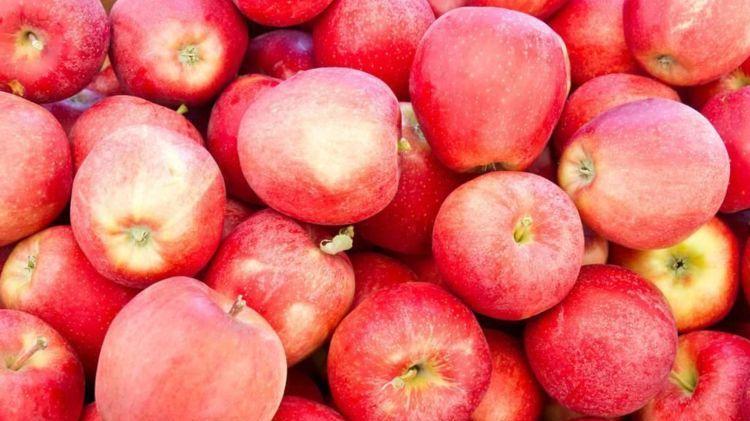 苹果这样吃, 能降血糖, 还能治疗失眠