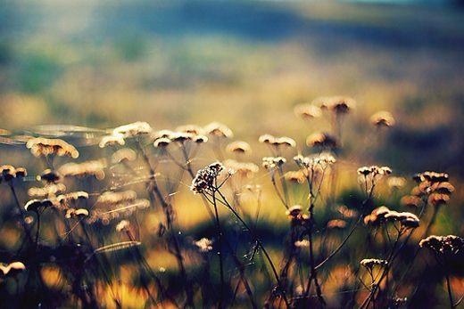 有了这十句话, 人生高度就不一样!