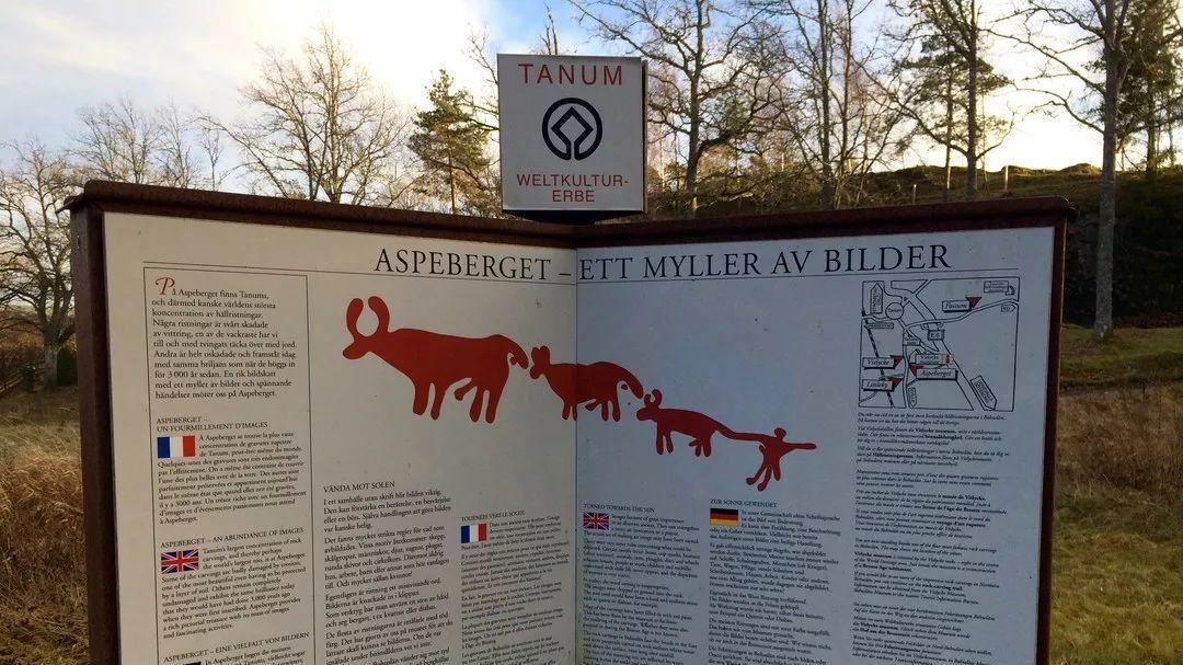 世界遗产•一起揭开瑞典神秘岩雕的面纱