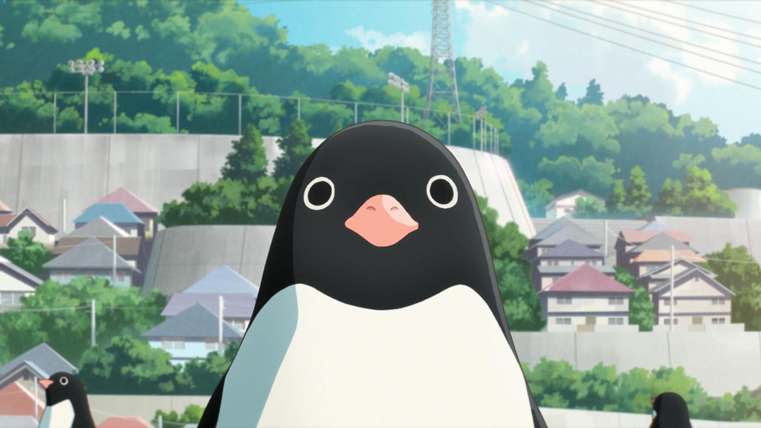 苍井优配音,企鹅成队,《企鹅公路》脑洞真大!