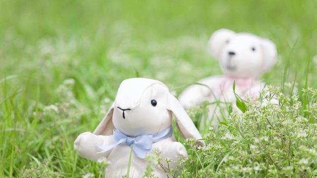 """属兔人:""""最苦命""""出生月份,不骗你,这是真的!"""