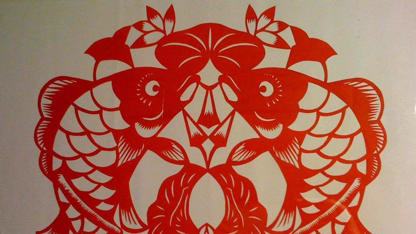 剪纸鲤鱼的步骤