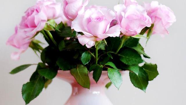 心理学:你第一眼喜欢哪束花,测出是爱干净的人还是邋遢的人