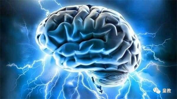 人脑只发挥了5%的说法——童教