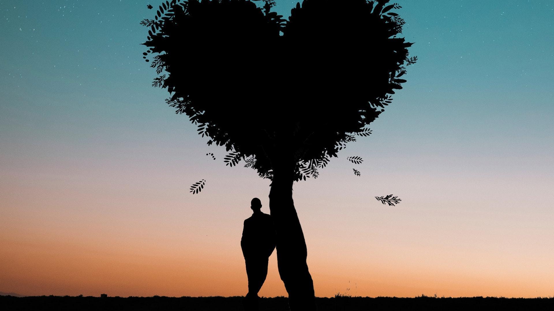 村上春树:对相爱的人来说,对方的心才是最好的房子
