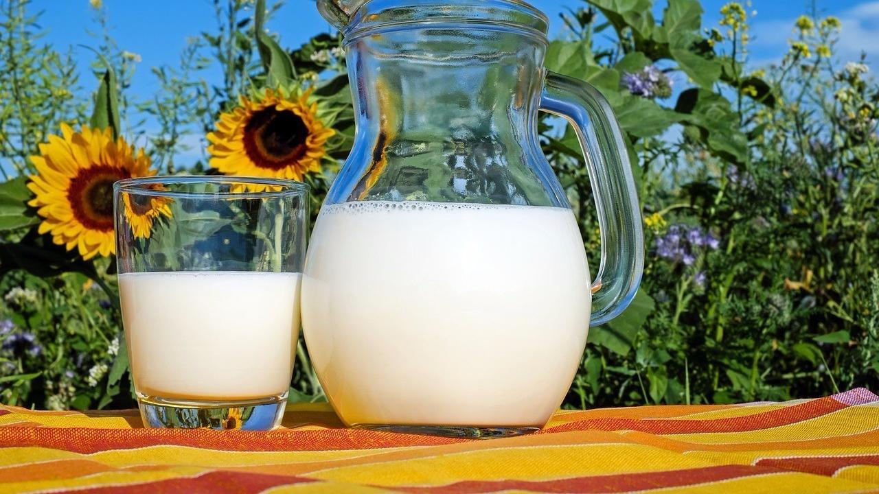 牛奶巧用,这几种做法太美味了