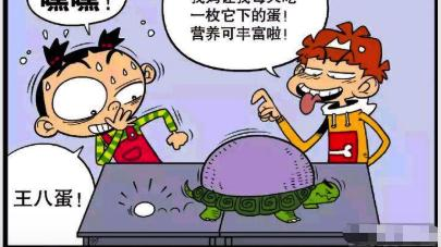 """衰漫画:阿衰织的""""锅盖""""是给乌龟穿的?""""妙语连珠""""尬翻全场!"""