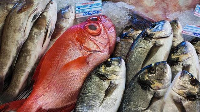 买鱼时,懂行人专挑4种鱼,深海鱼油丰富,纯野生无养殖,放心吃