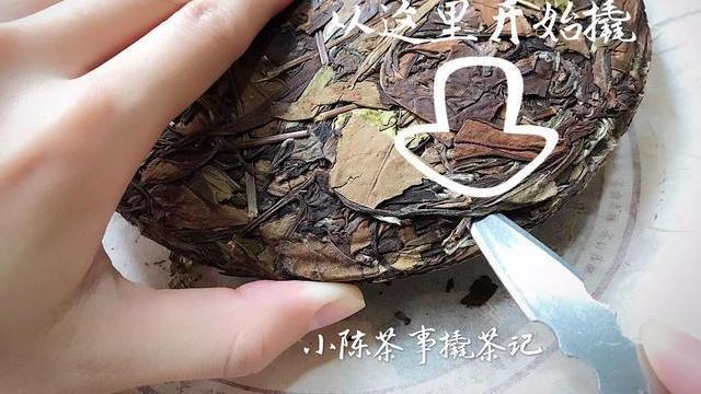 白茶饼一撬就碎的秘密,你知道几个?别一撬碎就怪品质不好