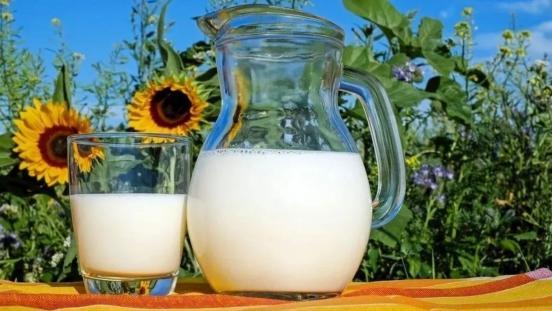 奶粉中的乳清蛋白是不是挺重要的?看完宝妈就知道