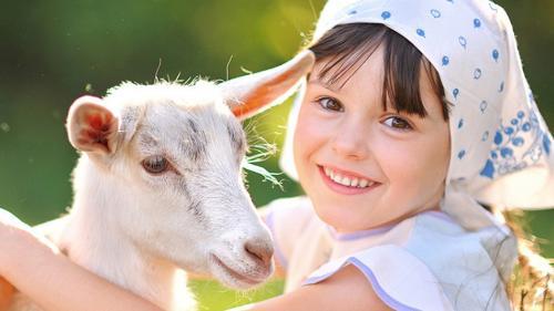 选佳贝艾特还是可瑞康,国际妈咪APP这两款奶粉哪个销量好?