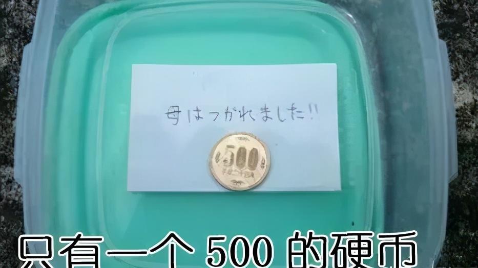 日本妈妈做的奇葩便当,孩子打开饭盒满脸问号,网友:捡来的吧?