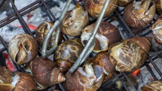 经典的蜗牛美食,吃过的人均赞不绝口,六款佳肴为君呈现