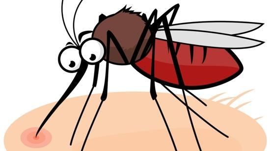 孕期驱蚊水怎么选?