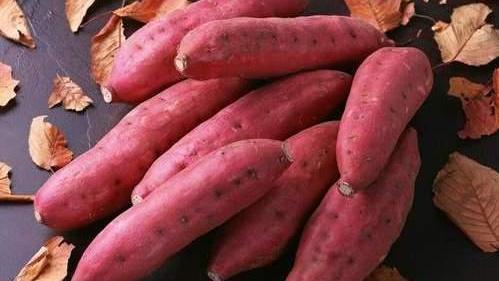 冬天红薯难保存?教你这样做,不烂不发芽,放到过年照样新鲜
