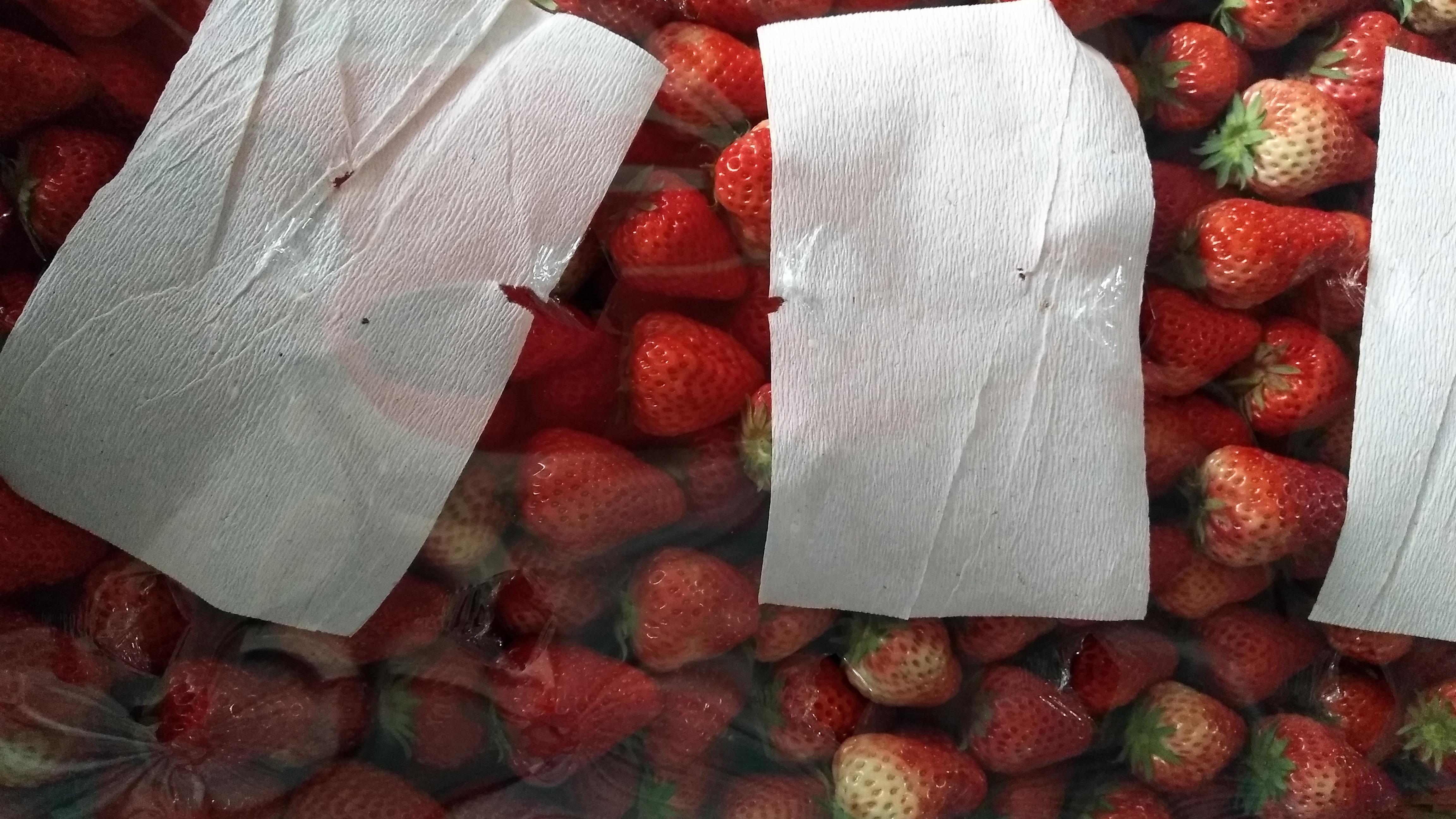 大草莓,来吃呀
