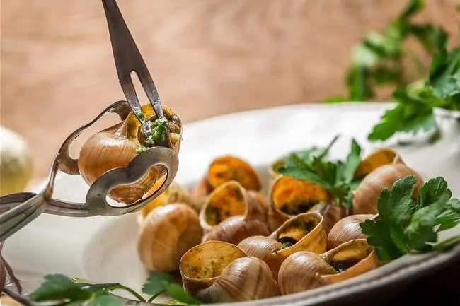 想不明白法国人为什么吃蜗牛?据说很美味,你敢吃吗?反正我不敢