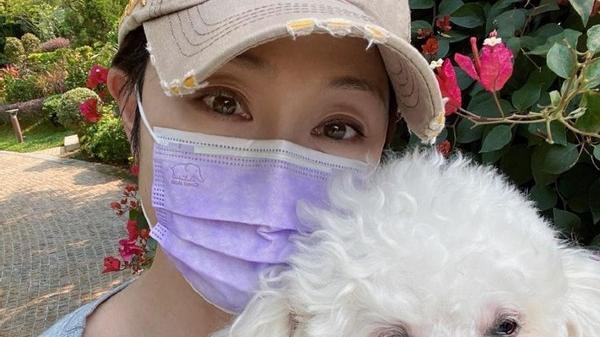 陈法蓉真有活力,就算穿的这么的老气,看着也比狗狗更可爱